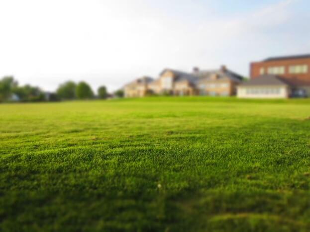 Worauf Man Beim Rasen Vertikutieren Unbedingt Achten Sollte