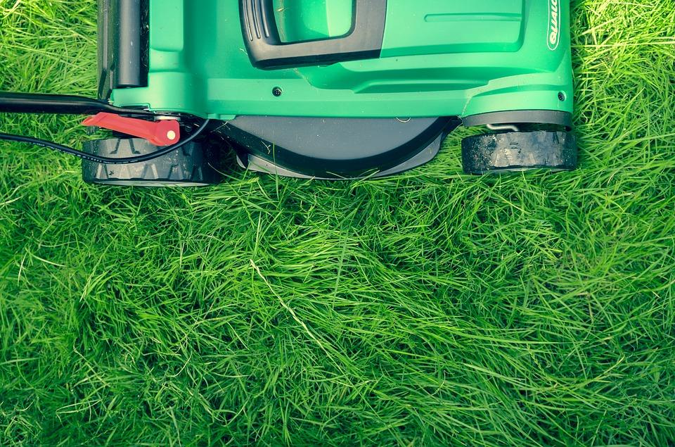 Rasen Vertikutieren Tipps Tricks Informationen Und Vertikutierer